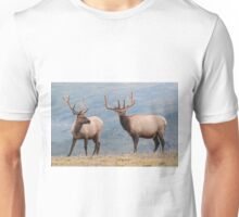 Elk in Rocky Mountain National Park Unisex T-Shirt