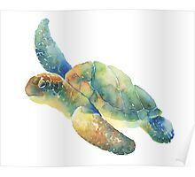 Watercolor Sea Turtle Poster