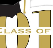Gold Class of 2016 with Mortarboard Sticker