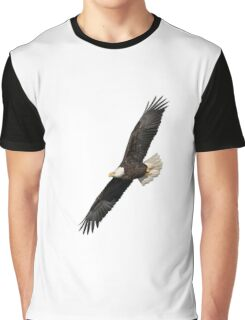 Isolated American Bald Eagle 2016-3 Graphic T-Shirt