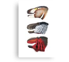 Triple rex Canvas Print