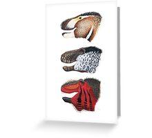 Triple rex Greeting Card