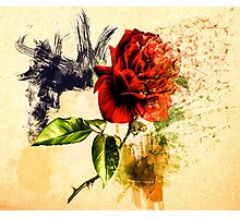 Every Rose Has ItsThorn Photographic Print