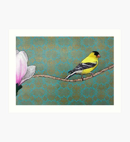 Channing--Goldfinch and Magnolia Art Print