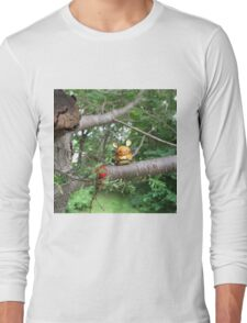 A Wild Dedenne Appears! Long Sleeve T-Shirt