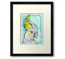 Blue Cockatoo Framed Print