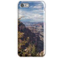 Grand Canyon No. 7  iPhone Case/Skin