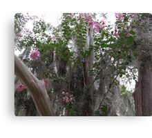 Spanish Moss and Floral Canvas Print