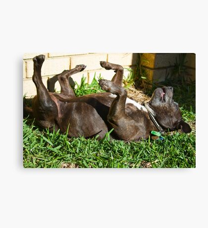 I've Had a Dog of a Day Canvas Print