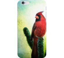 Red Cardinal No. 1 - Kauai - Hawaii iPhone Case/Skin