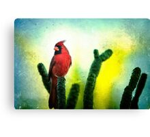 Red Cardinal No. 1 - Kauai - Hawaii Canvas Print