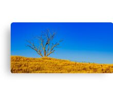 The Dry Country Canvas Print
