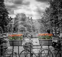 AMSTERDAM Gentlemens Canal  by Melanie Viola
