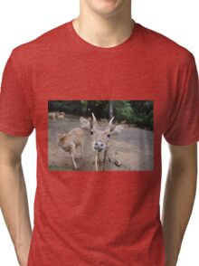 Cute Deer - Eating Vegetables Tri-blend T-Shirt