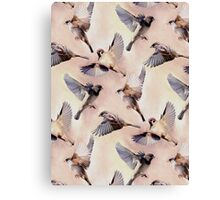 Sparrow Flight Canvas Print