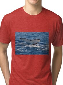 Humpback Tri-blend T-Shirt