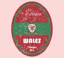 Euro 2016 Football - Wales One Piece - Short Sleeve