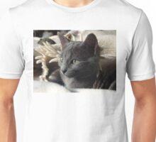 Grey Kitty Unisex T-Shirt
