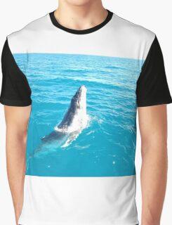 Humpback Calf, Hervey Bay Graphic T-Shirt