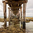 Beneath the Jetty by Linda Lees