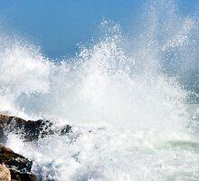 Sea Spray by Mark Draper