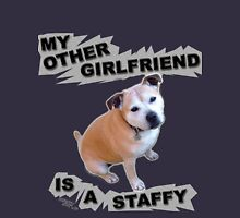 My Other Girlfriend Is A Staffy Hoodie