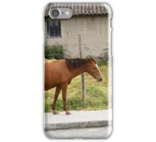 Horse in front of a Damaged House iPhone Case/Skin