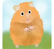 Hamster loves cookie Photographic Print