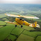 Going solo: Tiger Moth basic trainer by Gary Eason