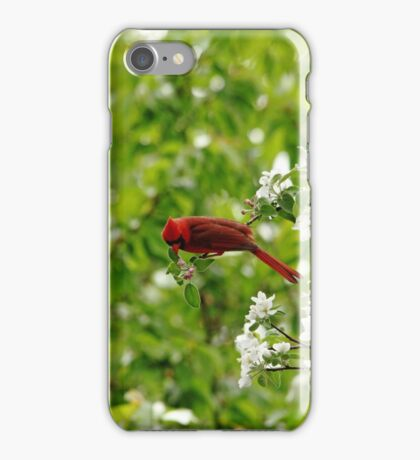 Smell The Flowers Along The Way iPhone Case/Skin