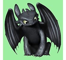 How to Train Your Dragon 14 Photographic Print
