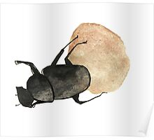 Dung Beetle Cute Funny Random Gift Cool Poster