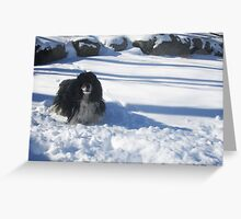 Eager for Snowballs Greeting Card