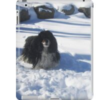 Eager for Snowballs iPad Case/Skin