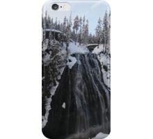 Mt. Rainer Winter waterfall iPhone Case/Skin