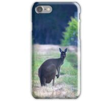 A Grey Western tending Great Western Grapes iPhone Case/Skin