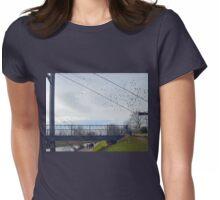 Birds in flight over Exeter Bridge....Devon UK Womens Fitted T-Shirt