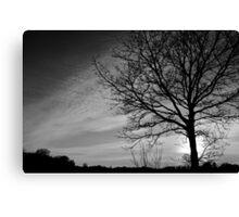 Norfolk Silhouette Canvas Print
