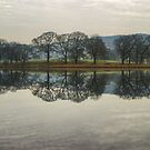 Esthwaite Reflections by Jamie  Green