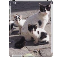 Stray Cats 2 iPad Case/Skin