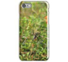 A Spider in a Web iPhone Case/Skin