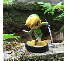 Link Explores the Forest Temple Photographic Print