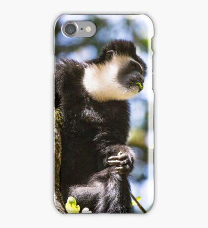 Colobus monkey iPhone Case/Skin