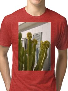 Cactus and Shutters Tri-blend T-Shirt
