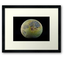 The Dark Side Of The Melon - Phase II Framed Print