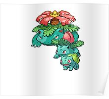 Bulbasaur Evolution Poster