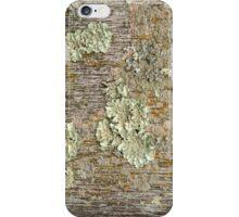 Dilapidated Wood iPhone Case/Skin
