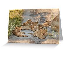 Six sleepyheads Greeting Card