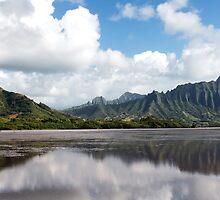 Sunrise Over The Koʻolaus by Alex Preiss