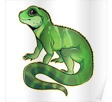Chinese Water Dragon Poster